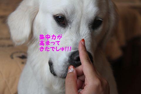 20110723_10_R.jpg