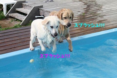 20110723_16_R.jpg