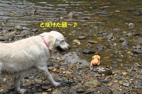 20110727-13_R.jpg