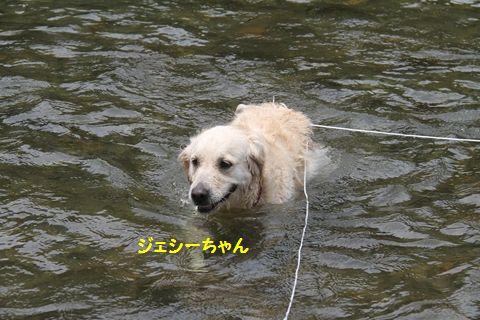 20110727-8_R.jpg