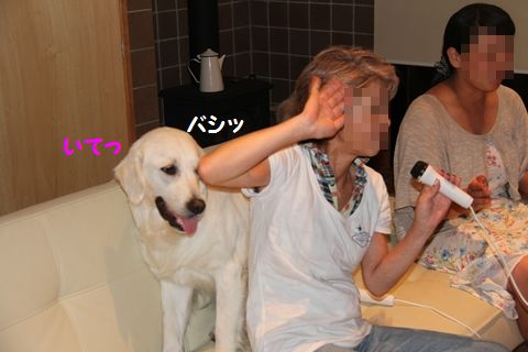 20110801_06_R.jpg