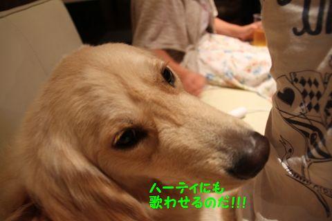 20110801_11_R.jpg