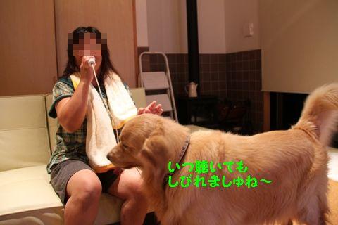20110801_15_R.jpg