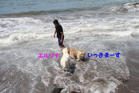 20110806_04.jpg