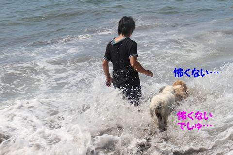 20110806_14.jpg