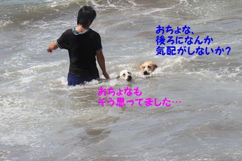 20110806_16.jpg