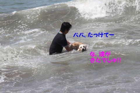 20110806_17.jpg