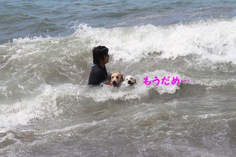 20110806_18.jpg