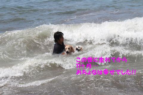 20110806_19.jpg