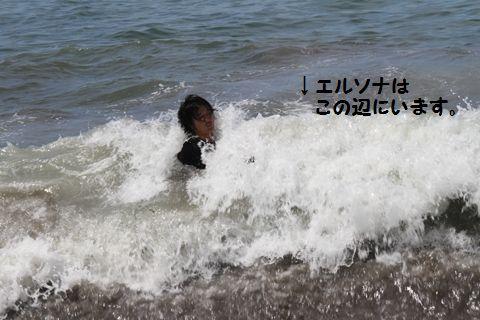 20110806_20.jpg