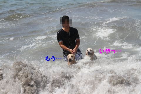 20110806_21.jpg