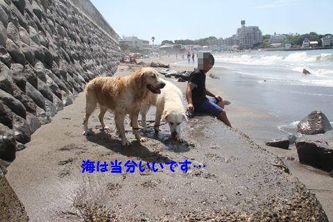 20110806_23.jpg