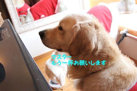 20110807_05_R.jpg