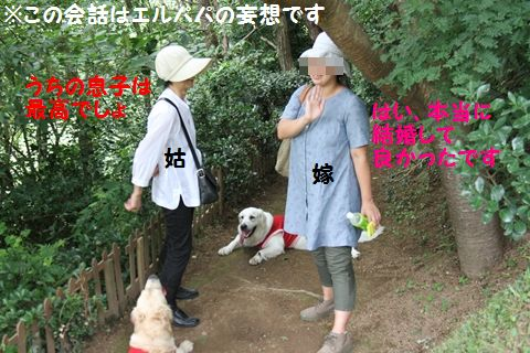 20110807_15_R.jpg