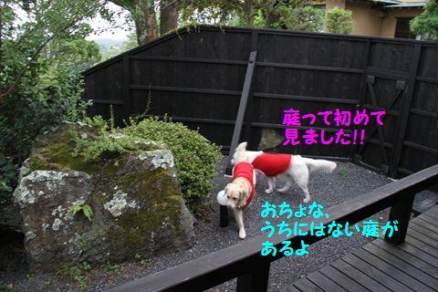 20110809_16_R.jpg