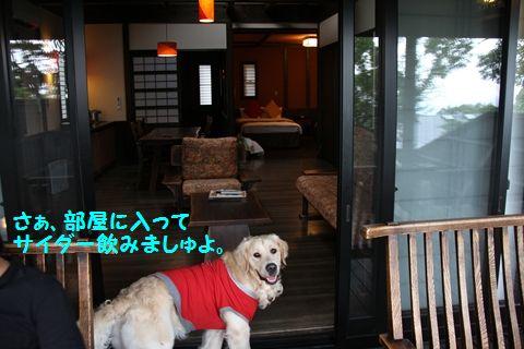 20110809_17_R.jpg