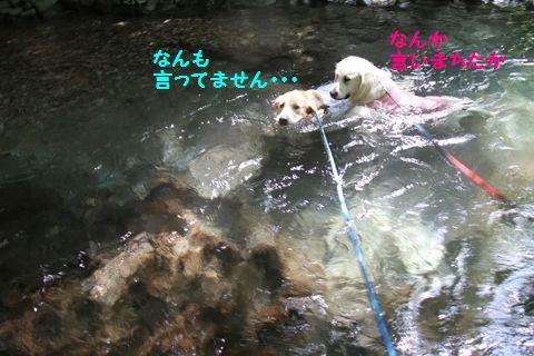 20110815-16_R.jpg