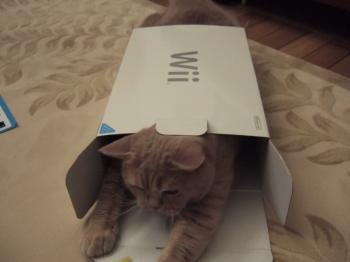 Wii猫2
