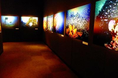 「青い地球のカシュ」写真展