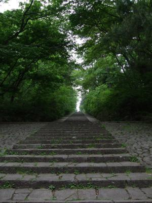 20090512散歩2