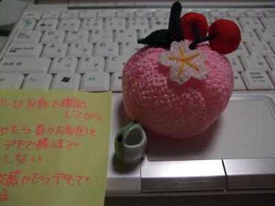 asukaさんjunjunさんのお土産