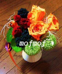 rose_or&r_mof