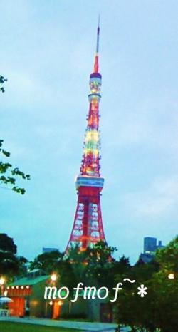 東京タワー_mof