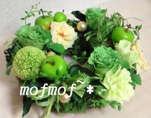 Gバラ_mof