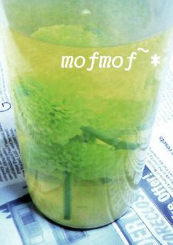 Gピンポン加工_mof