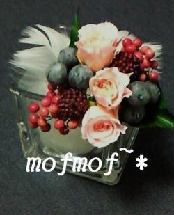 hane_P_mof.jpg