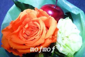 mini_1_mof.jpg