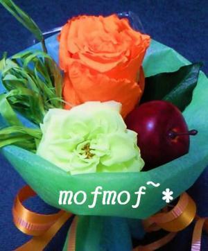 mini_2_mof.jpg