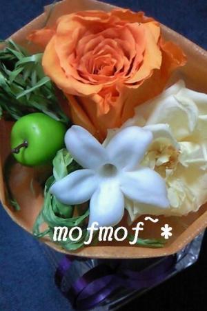 mini_3_mof_20090604214132.jpg