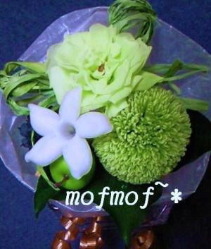 mini_4_mof.jpg