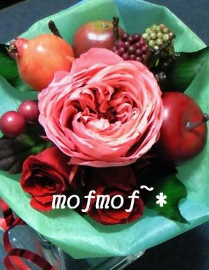 mini_5_mof.jpg