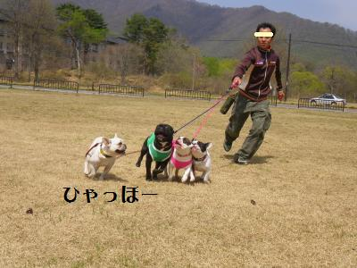 11_20110515220928.jpg