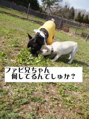 18_20110506225257.jpg