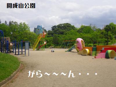 1_20110513152946.jpg