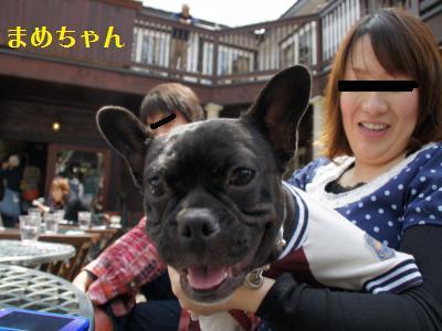 4_20110506225144.jpg