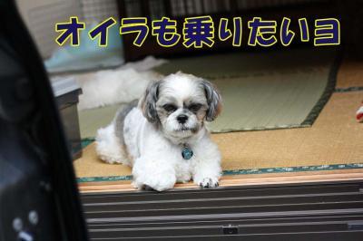 052_20090824001929.jpg