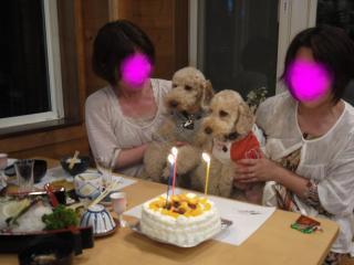 snap_haru0507_201171222948.jpg