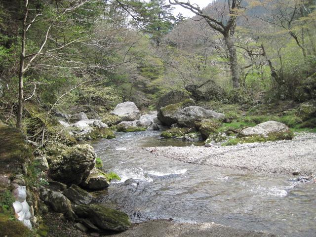 大野ヶ原 091