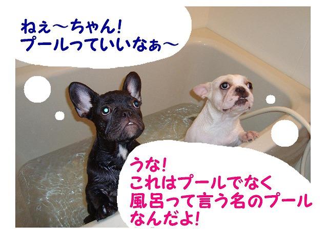 ひめうな風呂