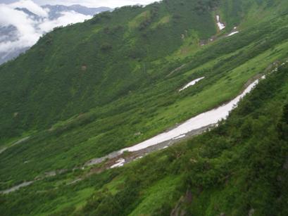 大観峰からの雪渓