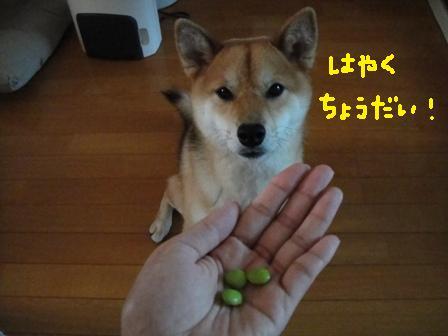 ichi114i.jpg