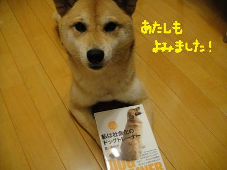 ichi115l.jpg