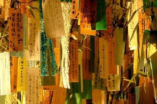 110812kibune008_.jpg