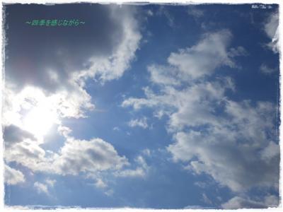 DSCN0679_convert_20120126130929.jpg