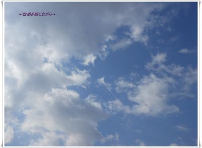 DSCN1117_convert_20120312113211.jpg