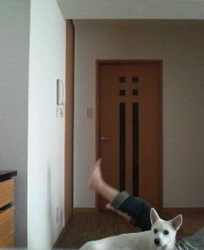 geiji-11.jpeg